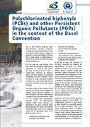 PCBs and other POPs in the context of the Basel Convention